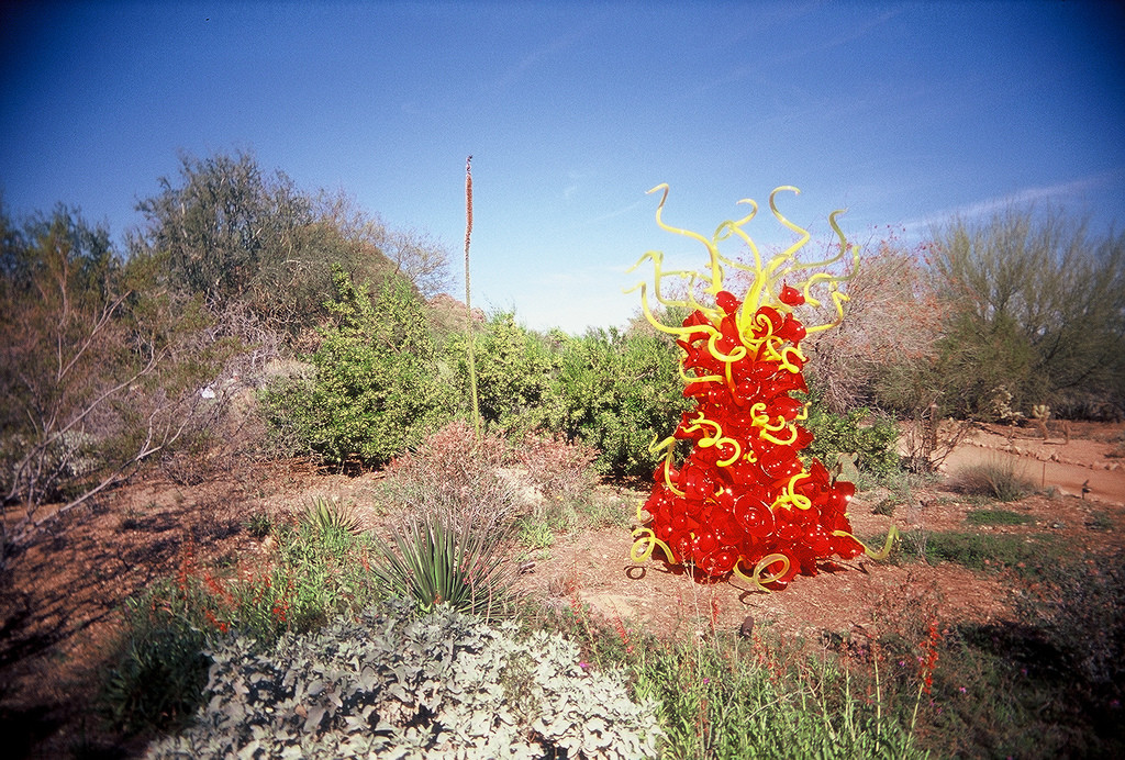 Chihuly Glass Sculpture in Desert
